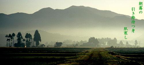 朝霧の引き際待つ身肌寒し