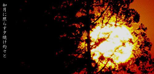 如月に照らす夕焼け灼々と